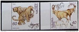 Armenia, 1995, Pantheres, Animals, MNH