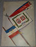 KINGDOM OF YUGOSLAVIA, SUBOTICA, PLZEN, SOKOL FLAGS, ORIGINAL OLD POSTCARD - Yugoslavia