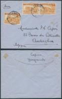 AK355 Lettre De Yangambi Congo à Auderghem 1948