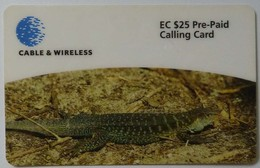 ANTIGUA & BARBUDA - Cable & Wireless - ANU 26 - Prepaid - Ground Lizard - $25 - 31.12.1999 - Used