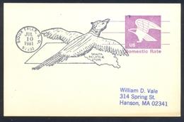 Usa 1981 Postal Stationery Card: Birds Oiseaux Vogel Uccelli: Eagle Adler Aigle Aquila Aguila Sioux Falls