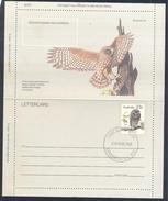 Australia 1984 Postal Stationery Letter Card: Birds Oiseaux Vogel: The Greater Sooty Owl (Tyto Tenebricosa); Eule Hibou