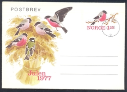 Norway 1977 Postal Stationery Cover: Birds Oiseaux Vogel Uccelli;
