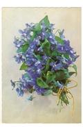 Bouquet De Violettes - 238 - Fleurs
