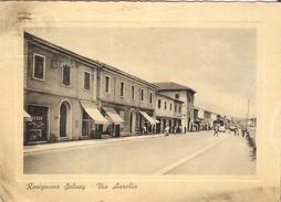 10/FG/17 - LIVORNO - ROSIGNANO SOLVAY: Via Aurelia - Livorno