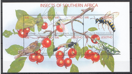 C184 LESOTHO FAUNA INSECTS OF SOUTHERN AFRICA 1KB MNH