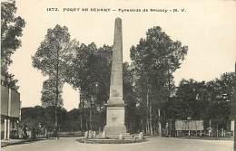 FORET DE SENART PYRAMIDE DE BRUNOY - Brunoy