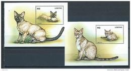 Lesotho 1998 Blocs Neufs N°127 Et 131 Avec Chats