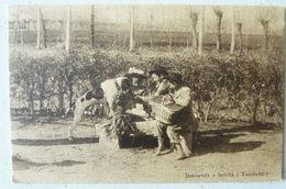 VERCELLI - INNOCENZA E FEDELTA' - FOTO DI ANDREA TARCHETTI (1854-1923) - Vercelli