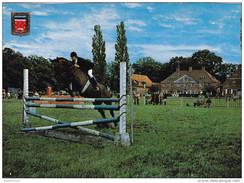 Grote Kaart Brasschaat Park Hemelhoeve Paardensport Jumping Paard Cheval Horse Animal - Brasschaat