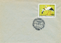 L3056 - Hungary (1977) Tatabanya: 20 Eves A Tatabanyai Zamenhof Eszperanto Osoport - Esperanto