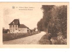 Belgique-België CP/PK Woluwe Saint-Lambert Au Bord De La Woluwe Neuve-Nieuw-Mint PR4138 - Woluwe-St-Lambert - St-Lambrechts-Woluwe