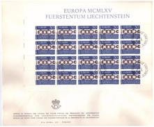 LIECHTENSTEIN - FDC - ANNO 1965 - BUSTONE - EUROPA MCMLXV - VADUZ AUSGABETAG - FOGLIETTO SU BUSTONE - EUROPA -