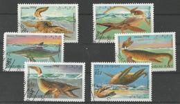 Animaux Préhistoriques - Brasilosaurus - Elasmosaurus - Plesiosaurus - Ichtiosaurus - Tilosaurus - Cronosaurus