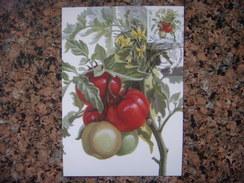 Uk.112S. Légumes. Tomate. Kartmaksymum. Premier Jour. Ukraine. 2016. Vegetables. Tomato. Kartmaksymum. First Day. - Autres