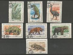 Animaux Préhistoriques - Ceratos.- Mosas.- Styvacos.- Dinornis - Smilodon - Protoceratops