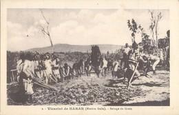 ADDIS ABEBA VICARIAT DE HARAR MISSION GALLA BATTAGE DU GRAIN ETHIOPIE AFRIQUE - Ethiopie
