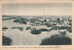 Cpa Postcard 2 Scans Missiên Van Scheut Mongolie Waar De Banen Nog Moeten Gettrokken Worden - Mongolie