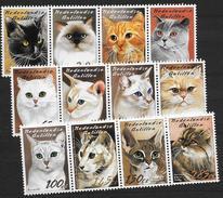 Antilles Neerlandaises 2003 N° 1376/1387 Neufs Avec Chats