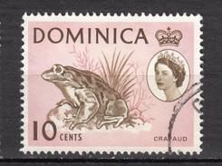 Dominique, Dominica, Grenouille, Frog, Élizabeth II