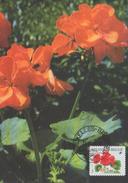 BUZIN / CARTE MB / COB 2854 / 22.11.1999