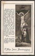 DP. JOANNES SEBRECHTS ° ZOERSEL 1839- ST-ANTONIUS 1912 - Religion & Esotérisme