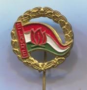 SCOUTING, SCOUTS, BOY SCOUT - ELORE,  Association HUNGARY, Vintage Pin, Badge, Abzeichen - Associazioni