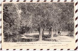 U2273 MONTGERON PAYSAGE DE LA RIVIERE D'YERRES PRES LA ROUTE DE CROSNE  2 SCANS - Montgeron