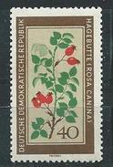 DDR 1960  Mi 761  Einheimische Heilpflanzen  Postfrisch