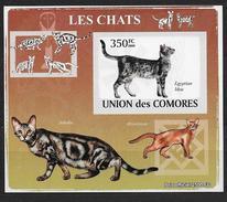 Comores 2009 1443 Neuf Avec Chat égyptien