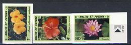 WF 1991 Serie N. 420-422 Fiori MNH NON DENTELLATI Cat. € 6.15 - Imperforates, Proofs & Errors