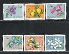 POLONIA - 1984 - 6 VALORI NUOVI S.T.L. - EMISSIONE FIORI - CLEMATIS - IN OTTIME CONDIZIONI.