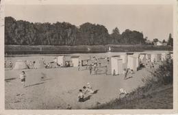 D45 - CHATEAUNEUF SUR LOIRE - LA GRANDE PLAGE, EN FACE, LE CHASTAING - CPSM Petit Format - France