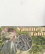 VANILLE DE TAHITI   PF 145 - Polynésie Française