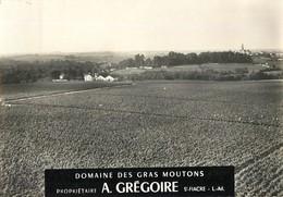 SAINT FIACRE DOMAINE DES GRAS MOUTONS PROPRIETAIRE A. GREGOIRE VIGNOBLES DE MUSCADET ET SEVRE ET MAINE 44
