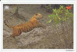 UNESCO World Heritage Site ,Tiger, Sundarbans National Park,World Heritage Monument, India Post
