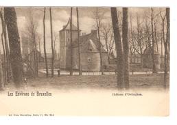 Belgique-België CP-PK Château D'Oetingen Environs De Halle-Hal Neuve-Nieuw-Mint PR4168 - Halle