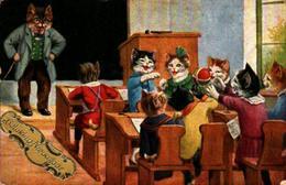 3 Chat , école Animaux Humanisés Chats - Animaux Habillés