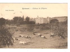 Belgique-België CP-PK Sprimont Château De Xhignez V.France Réexpédiée Au Château D'Othée C.d'arrivée PR4172 - Sprimont