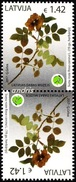 Latvia Lettland Lettonie 2017 (02) Museum Of Natural History - Herbarium - Dogs Rose (tete-beche Pair)