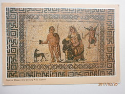 Postcard Paphos Mosaic 3rd Century AD Cyprus [ Roman ] My Ref B2469 - Cyprus