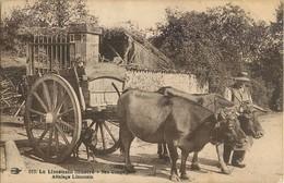 LE LIMOUSIN NOS CAMPAGNES ATTELAGE BOEUFS - Limousin