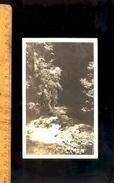 LES GRANDS GOULETS : La Vernaison