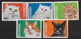 Nicaragua 1984 N°1319/1323 Oblitérés Avec Chats