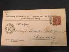 ANTICO PIEGO POSTALE-CREMONA-16-4-1893-COLTIVAZIONI SPERIMENTALI DELLA BARBABIETOLA DA ZUCCHERO-1893