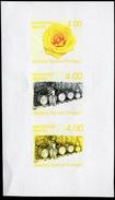 New Zealand Wine Post Design Comparison. - New Zealand