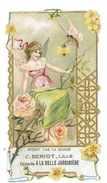 CHROMO IMAGE MAGASIN C. BERIOT CHICOREE A LA BELLE JARDINIERE Gauffree - Other