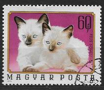 Hongrie 1974 N°2405 Oblitéré Avec Chats