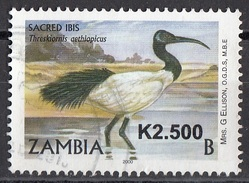 Zambia 2010 (Scott Tipo A171) Overprint K2.500 - Sacred Ibis - Threskiornis Aethiopicus - Viaggiato Used - Gru & Uccelli Trampolieri