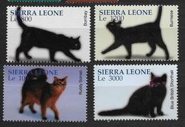 Sierra Leone 2004  N° 3867/3870 Neufs Avec Chats